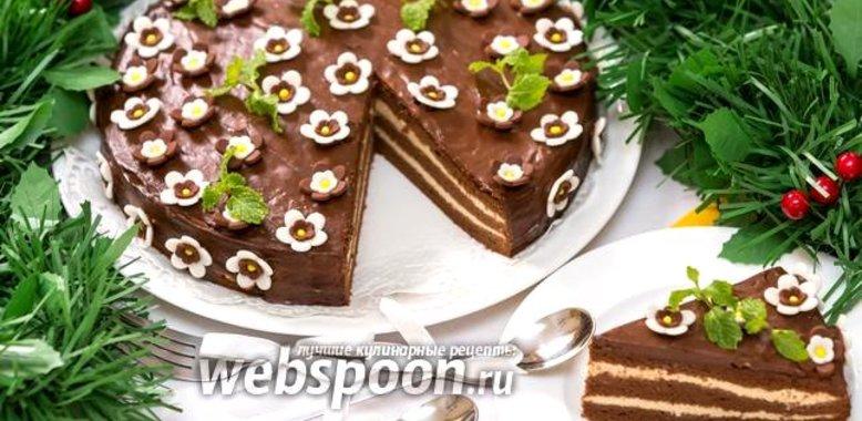 Рецепты кофейного торта с фото